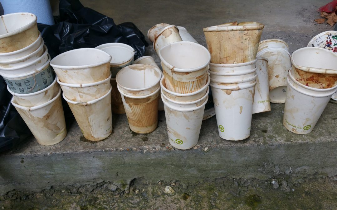 ENVIRONMENTAL AUDIT COMMITTEE: DISPOSABLE PACKAGING: COFFEE CUPS